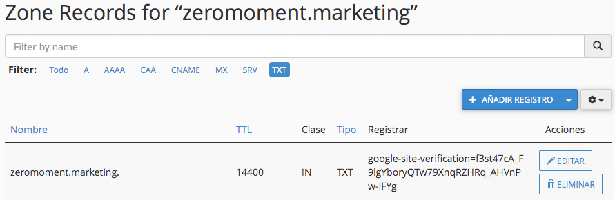 Anadir registro txt para verificar Google Search Console