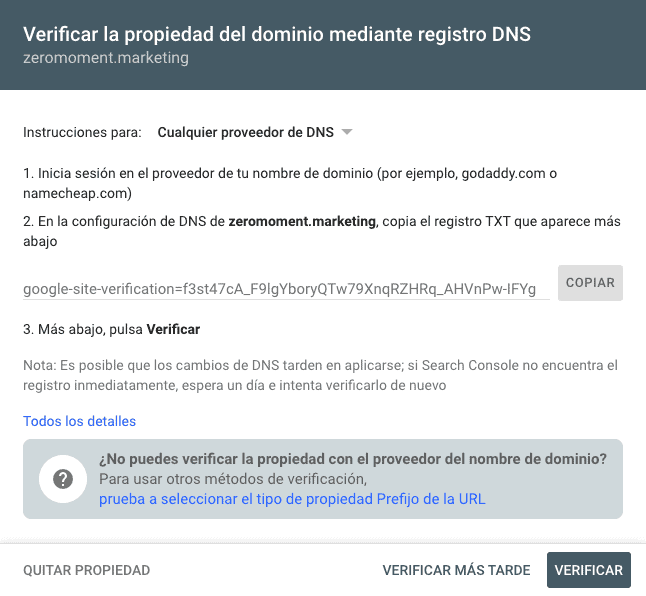 Verificación de Google Search Console mediante registro DNS