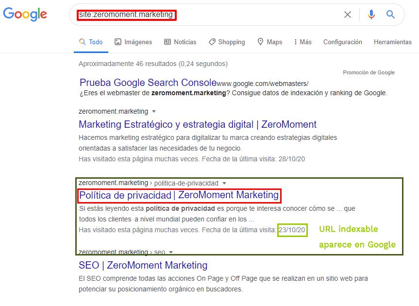 Resultado de Política de privacidad. URL indexable que aparece en Google