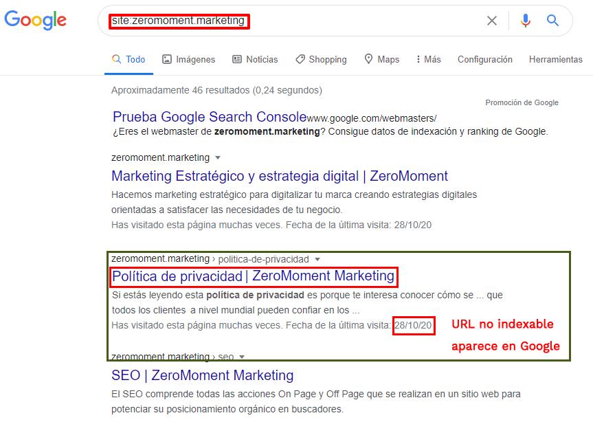 Resultado de Política de privacidad. URL que no indexable que aparece en Google