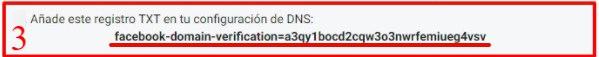 Business Manager de Facebook: DNS TXT añadida